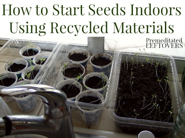 How to Start Seeds Indoors Using Recycled Materials