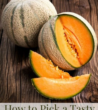 How to pick a delicious cantaloupe every time!