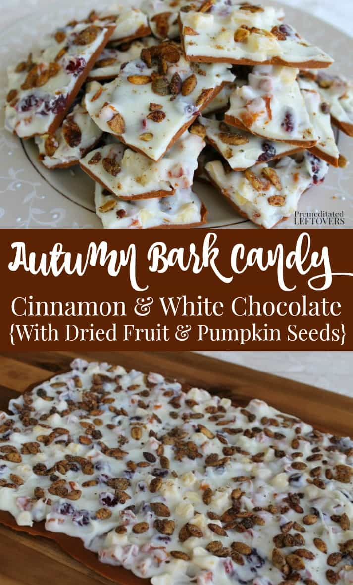 This delicious Autumn Bark Candy recipe jas all the flavors of fall: dried fruit, cranberries, nuts, and pumpkin seeds in a white chocolate & cinnamon bark base. Easy fall recipe! Perfect for Fall harvest parties or a hostess gift.