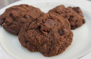 Gluten-free Chocolate Chocolate Chip Cookies Recipe