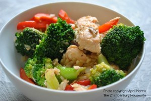 Salmon and Broccoli Stir-Fry from 21st Century Housewife