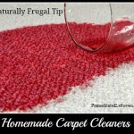 Homemade Carpet Cleaners and Carpet Stain Removers