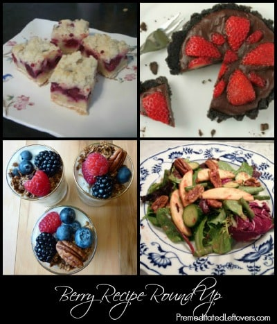 Berry Recipe Round Up