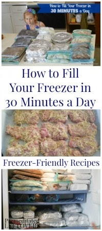 How to fill your freezer in 30 minutes a day. Frugal ideas, and time-saving tips for freezer cooking. Includes easy freezer recipes & a menu plan.
