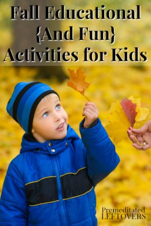 A child looking at a fall leaf - one of the education fall activities suggested.