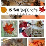 15 Fall Leaf Crafts for Children - Here are 15 easy fall arts and craft projects for kids using fall leaves or creating fall leaves with another medium.