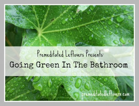 Going Green Series: Going Green In The Bathroom