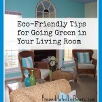 Eco-Friendly Tips for Going Green in Your Living Room