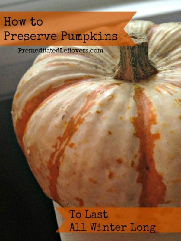 How to Preserve Pumpkins During the Winter: Here is how to preserve your pumpkins so they will last all winter. This allows you to use them at a later date.