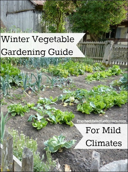 Winter Vegetable Gardening Guide for Mild Climates: A list of cold-hardy vegetables you can grow in your garden in the winter and tips for winter gardening.