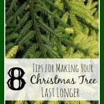 8 Ways to Make Your Christmas Tree Last Longer- These helpful tips will show you how to care for your Christmas tree so you can enjoy it all season long.