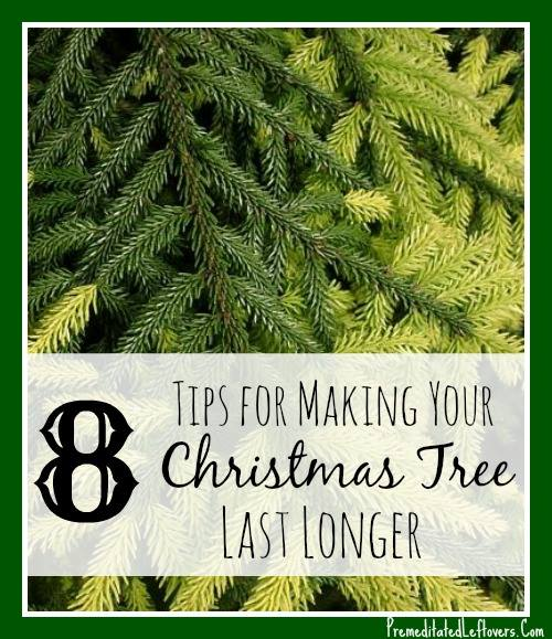 8 Ways to Make Your Christmas Tree Last Longer - Tips for choosing a Christmas tree and prevent it from drying out.