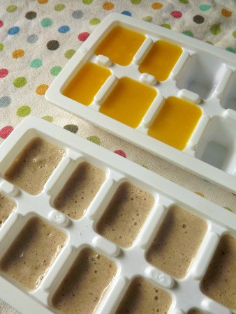 freezing baby food in ice-trays