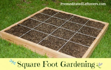 to Start Square Foot Gardening