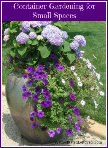 How to start container gardening in small spaces for Gardening in small spaces
