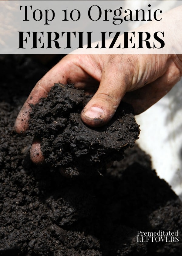 Choose from these top 10 Organic Fertilizers to feed your plants.These are the organic fertilizers to use to create a healthy organic garden and yard.