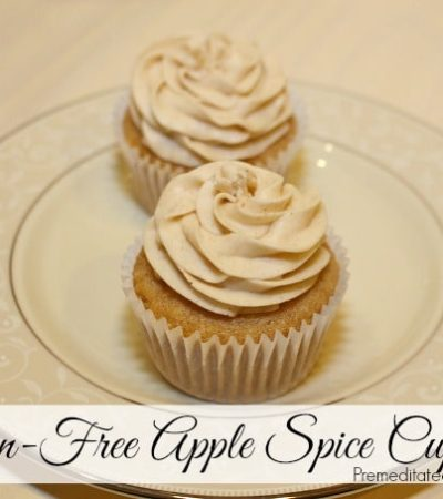 Gluten-Free Apple Spice Cupcake Recipe with Cinnamon Frosting