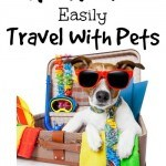 How To Easily Travel With Pets