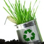 How an Eco-Friendly Lifestyle can save you money