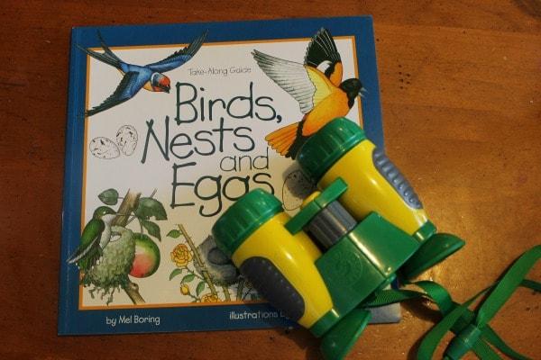 Backyard Birdwatching Unit Study