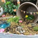 How To Create a Magical Fairy Garden