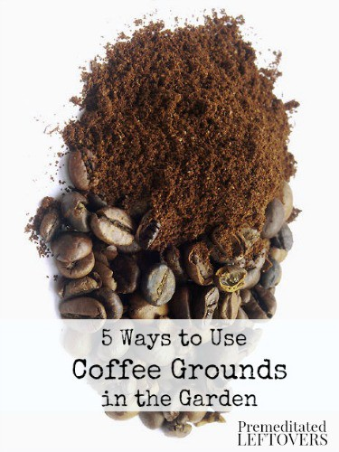 5 ways to use coffee grounds in your garden for How to use coffee grounds in garden
