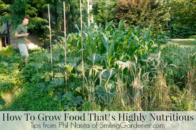 How To Grow Food That's Highly Nutritious (And Has Fewer Pests)