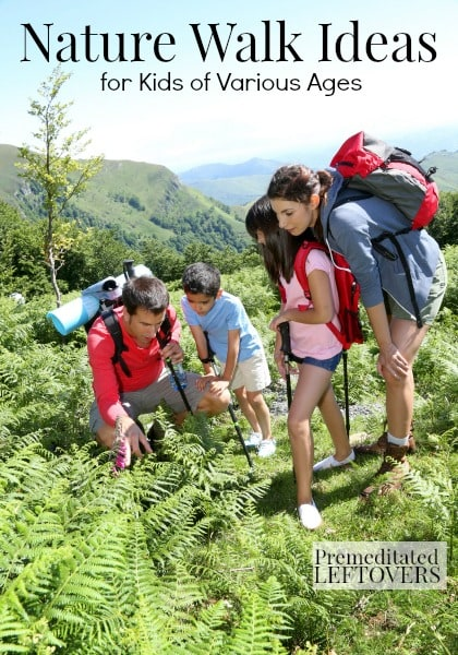 Nature Walk Ideas for Kids of Various Ages - Fun Games and Ideas to keep kids interested during a nature walk.