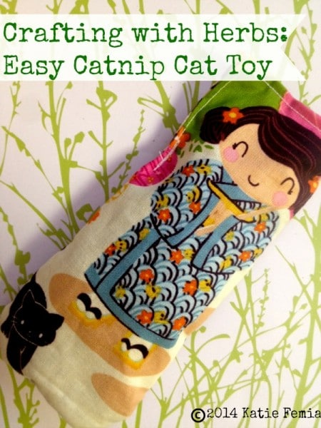 Make this Easy DIY Catnip Cat Toy for your cat.