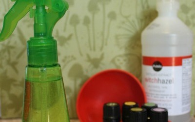 How to Make Natural Homemade Insect Repellent