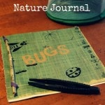 How to Make a Nature Journal for Kids. Make homemade nature journals with your child to record your forest finds, create leaf rubbings, or to sketch in.