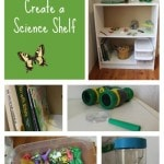 How to Create a DIY science shelf