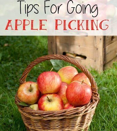 Tips for going apple picking