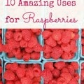 10 uses for raspberries