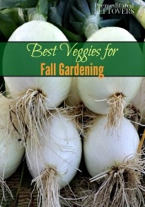 The best vegetables to grow in our gardens this fall and a list of vegetables that you can grow from seed in your fall garden and which vegetables should be started from transplants.