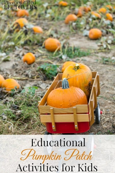 7 Educational Pumpkin Patch Activities for Kids