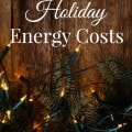 How to Cut Holiday Energy Costs
