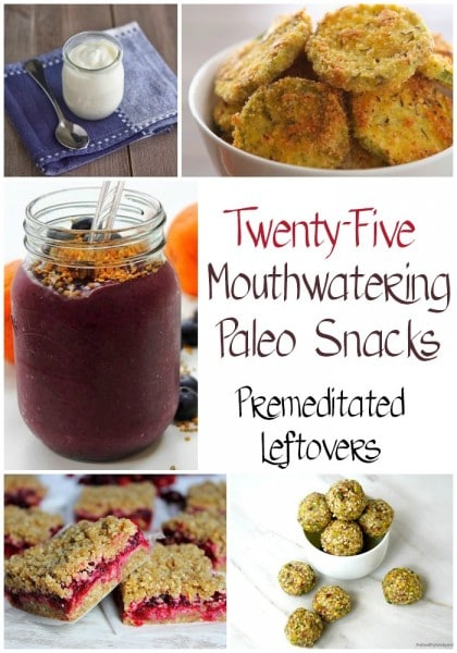 25 Paleo Snack Recipes - These delicious paleo snacks are full of healthy lean protein, great nutrients, vitamins and lots of vegetables and fruits.