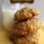 Pumpkin Spice Lactation Cookies