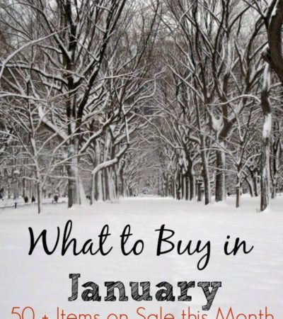 What to Buy in January- If you want to save more money in the new year, take a look at this list of 50 items you can find on sale or clearance this