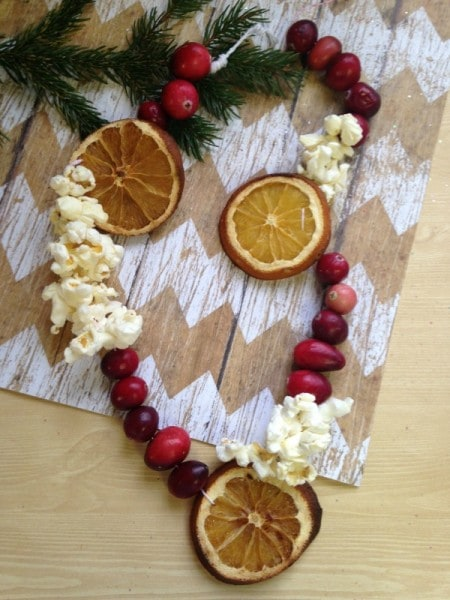 DIY Dried Fruit Garland
