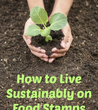 Living green on food stamps is achievable (and can even save you money) using these tips for How to Live Sustainably on Food Stamps.