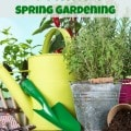 7 Tips for Successful Spring Gardening - Set yourself up for a successful spring growing season with these 7 easy spring vegetable gardening tips and ideas.