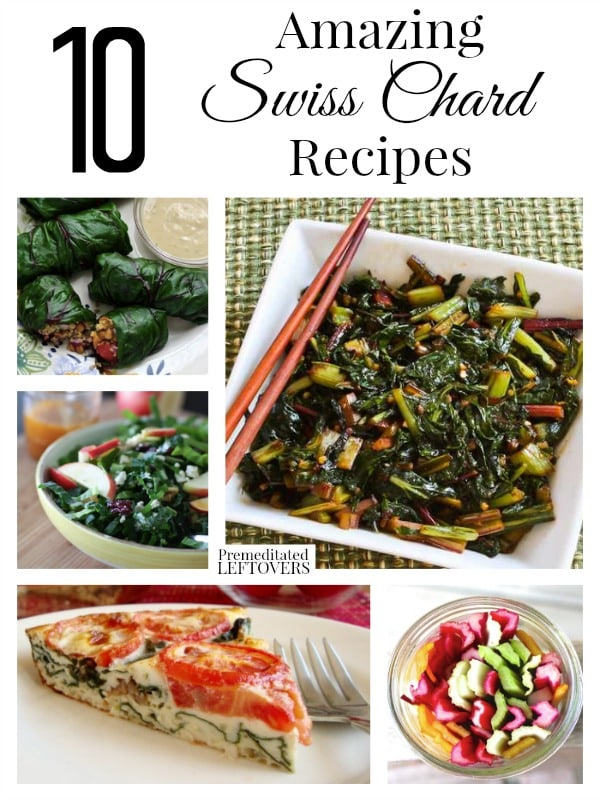 Wondering how to cook Swiss Chard? You can use the Swiss chard stems and chard leaves. Here are 10 Swiss chard recipes plus how to freeze Swiss Chard,