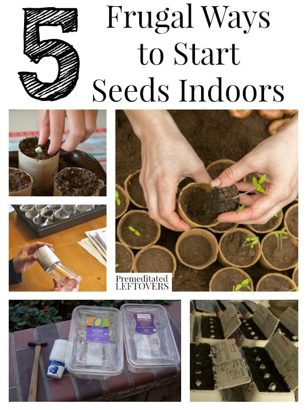 Starting Garden Plants Indoors 5 frugal ways to start seeds indoors 5 ways to start seeds indoors and tips for starting seedlings includes 5 ways to workwithnaturefo