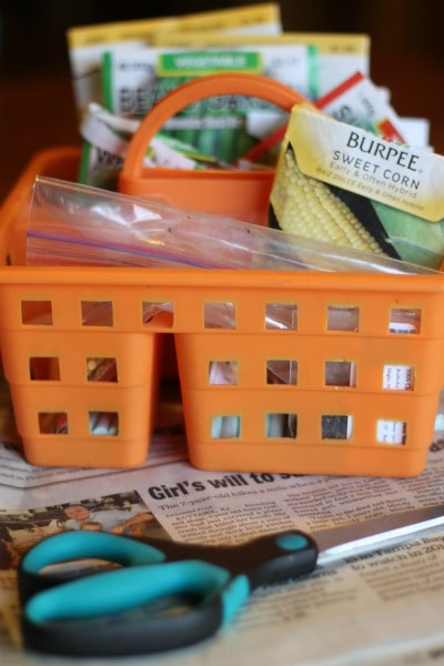 DIY seed tape supplies