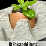 10 Household Items You Can Use as Seed Starters