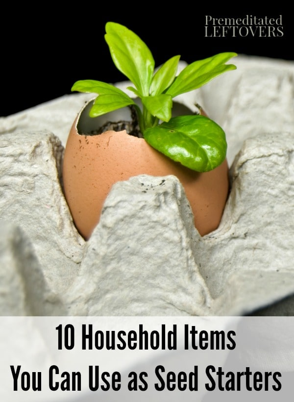 10 household items you can use as seed starters - Household items use ...