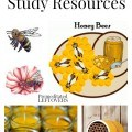 Bee Unit Study Resources including books about bees, bee crafts, educational bee videos, bee printables and bee study unit ideas.