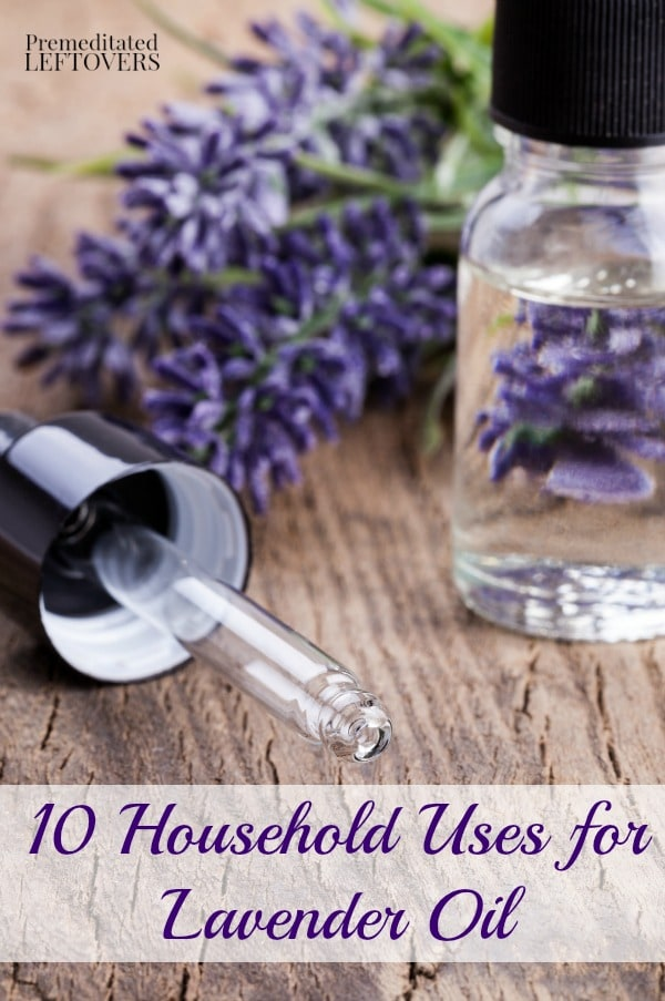 Here are 10 Household Uses for Lavender Oil for health, beauty, and cleaning, including headache relief, homemade insect repellent, and more.